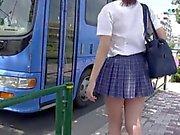 Bus Line 1 N15