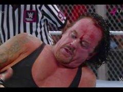 WWE Brock Lesnar VS Undertaker