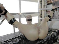 Dutch pornstar / gymnast Verona van de Leur (bdsm)