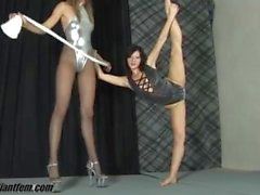 Giantfem - tall girl pantyhose