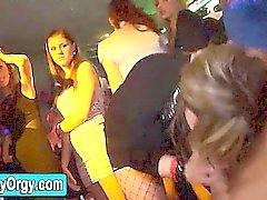 Party sluts suck stripper cock