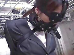 Bound and gagged Oriental businesswoman given orgasms with toys