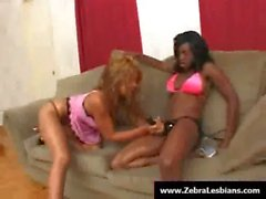 Zebra Girls - Ebony lesbian babes enjoy deep strap-on fuck 03