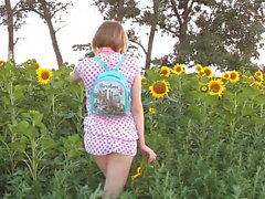 Echo in the sunflowers